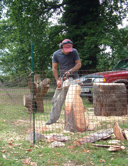 Chainsaw sculptor ray wirick